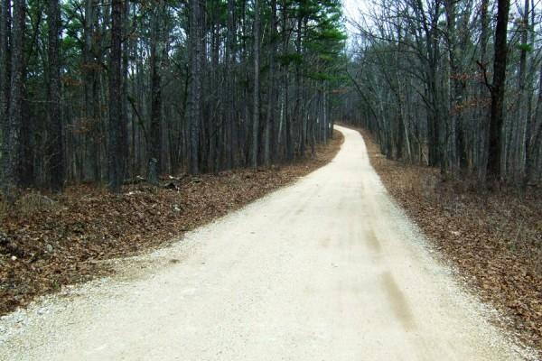 Forrest Road - CR-205 (Floyd Tower Road)