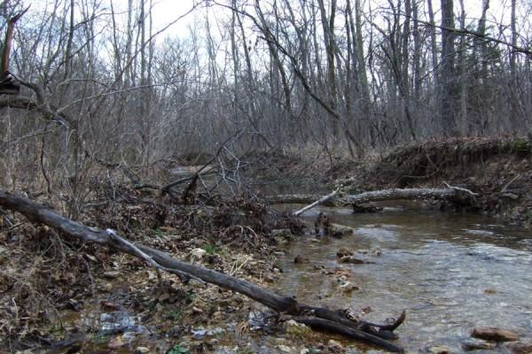 Little Brazil Creek, Missouri