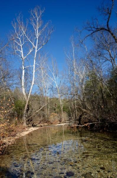 Piney Creek in the Fall