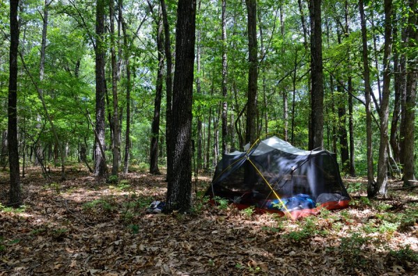 Photograph of an MSR Mutha Hubba Tent set without a flysheet near Tar Kiln Trail, Piney Creek Wilderness