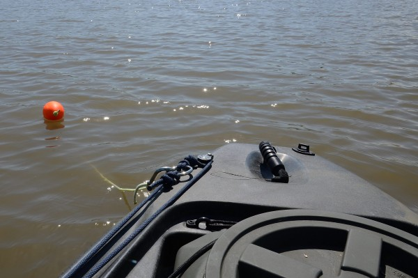 Kayak anchored by the stern using an anchor trolley. Note the  Carabiner used to connect the anchor to the anchor trolley.  You can't see the dive reel as it is in the water connected to the anchor buoy