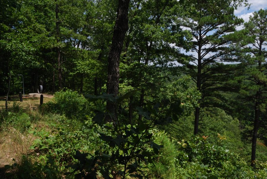 Red bluff campground davisville missouri ozarks walkabout a picture showing the edge of the bluff at the pines overlook red bluff campground sciox Images