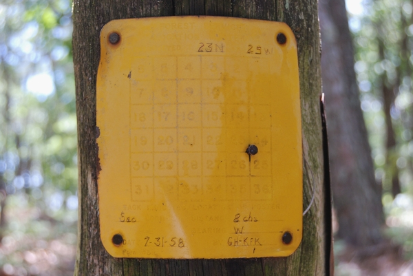 Color photograph of a Forest Service Location Poster survey marker found on the Tar Kiln Trail of Piney Creek Wilderness, Missouri.