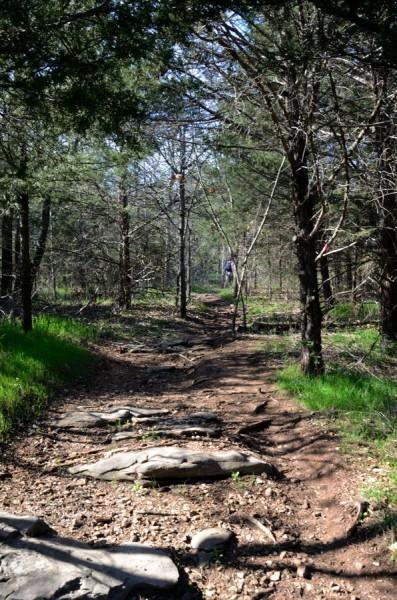 Sac River Trail