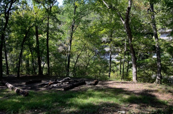 Campsite By Long Creek