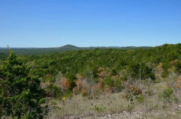 Lower Pilot Knob from the glades on Coy Bald Trail