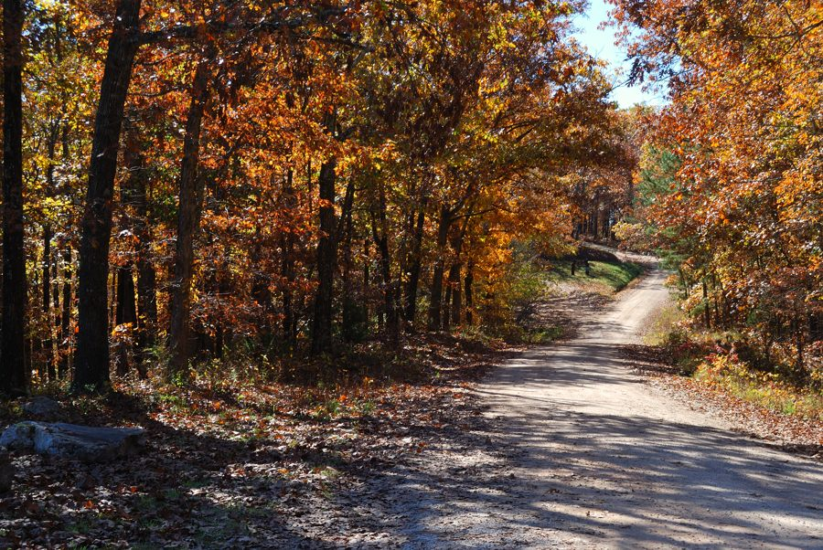 Glade top trail mark twain national forest taney for Ozark national forest cabins