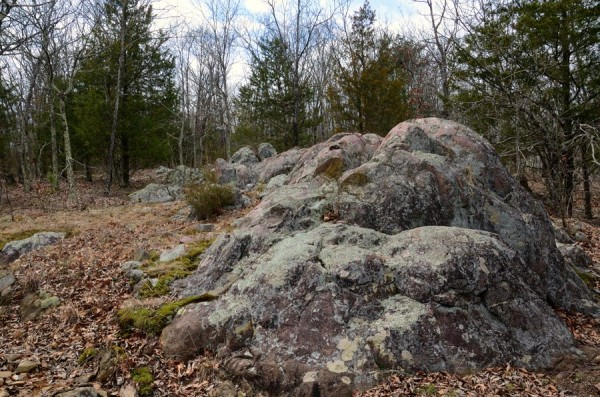 Granite Boulders - Bell Mountain Wilderness