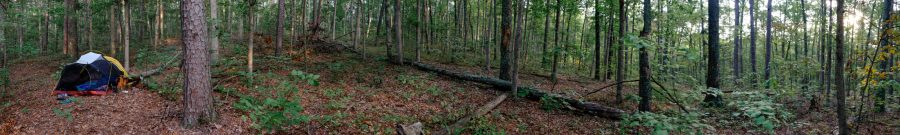 Panoramic picture of our campsite in the Mark Twain National Forest